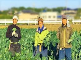 <span>株式会社チェスナットファーム</span>茨城県 酪農業