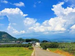 <span>株式会社アグレス</span>長野県 野菜