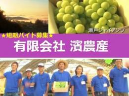 <span>熊山園</span>神奈川県 植木の生産