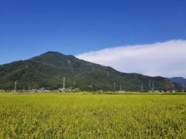 <span>増田農業株式会社</span>奈良県 野菜生産、加工、販売、流通