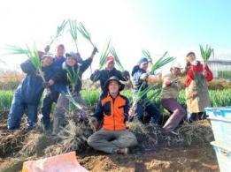 <span>株式会社柏染谷農場</span>千葉県 稲作、麦、大豆、ブルーベリー